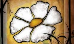 Petal White Series
